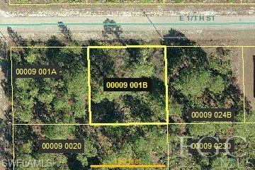 802 17th ST | LEHIGH ACRES, Florida 33972, MLS ID 221009029, Land, ting_type], Marco Island, Real Estate, For Sale, The McCarty Group, Mike McCarty, Wendy McCarty
